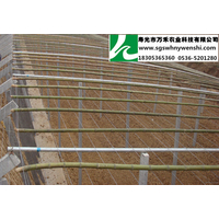 供应冬暖式立柱型日光温室