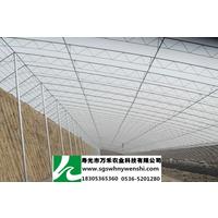 供应冬暖式全钢架日光温室