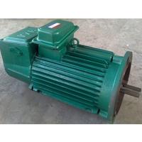 厂家直销立式YZR132-4-5.5KW塔吊专用电动机