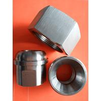 石油化工锻钢制承插焊和螺纹活接头