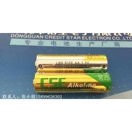 AA碱性电池,5号碱性电池,LR6电池,加入WERCS系统 空运报告