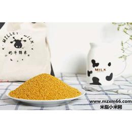 大宗批发优质陕北米脂小米