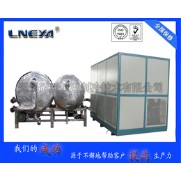 LNEYA工业低温冷冻机LJ-6W快速制冷