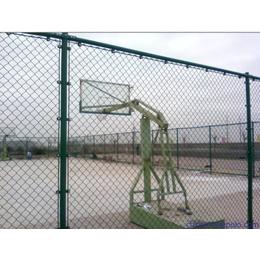 河北鼎萨体育围栏 运动护栏 球场围栏