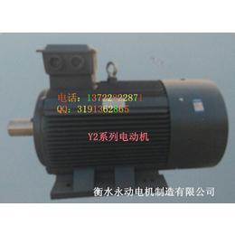 Y2-225S-37KW-4****电动机永动亚博国际版