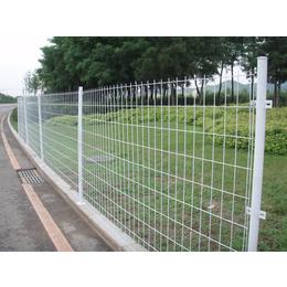 护栏网厂家供应湖南省使用浸塑双边丝护栏网
