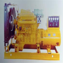 仁源动力柴油发电机组0