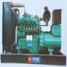 仁源动力柴油发电机组1