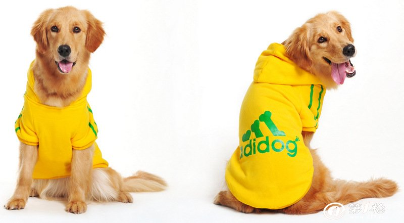 宠物服装 大狗衣服 宠物用品 黄色adidog宠物衣服 宠服装