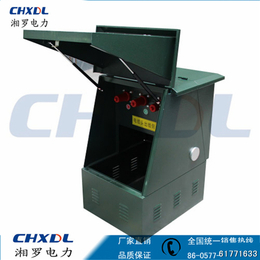 DFW-12高压电缆欧式分支箱转接箱10kv一进二出不锈钢