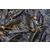 淡水草鱼苗批发观赏锦鲤鱼苗价格放生泥鳅鱼苗批发价格缩略图4