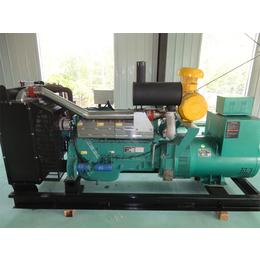 供应潍坊发电机组  发电机组生产厂家 柴油机生产厂家