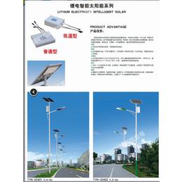 扬州路灯厂直销6-8米单双臂太阳能路灯