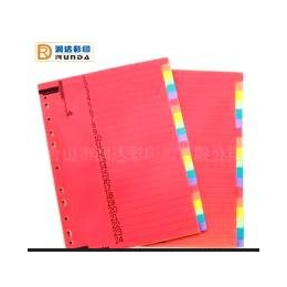 彩色分页纸,文件内分页纸,文件分类(ID004)