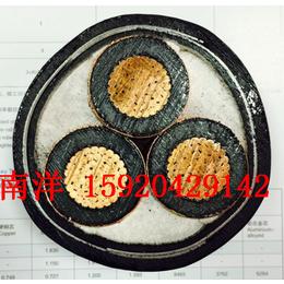 广州南洋电缆厂 国标YJV 3x70 YJV VV南牌电缆