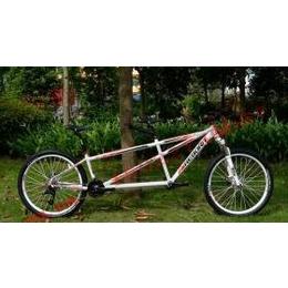 供应捷安特自行车REBORN X2双人自行车铝合金山地自行车
