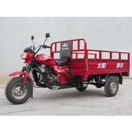 供应大阳DY175ZH-3三轮摩托车 载运三轮车 水冷型
