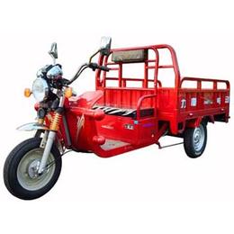 供应力帆正三轮摩托车 LF4000DZH 助力电动三轮车