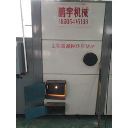 鹏昊洗碗机专用蒸汽热水锅炉 热水热风锅炉 生物质颗粒燃料锅炉