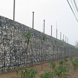 深能丝网石笼网 石笼网批发销售