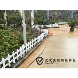 湘潭批发供应园林绿化花坛护栏pvc护栏园艺护栏