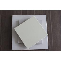 吉林省优质防腐耐酸砖 卓越造就不凡