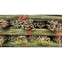 供应2米5,3米,4米水竹菜架竹