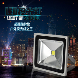 华涌照明 LED投光灯 100W防水室外照明投射灯泛光灯