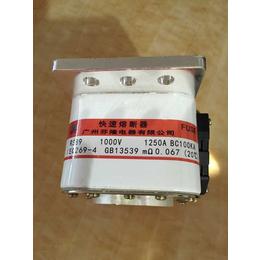 芬隆RS89快速熔断器订做