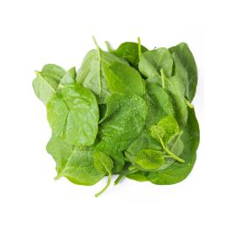 新鲜蔬菜木耳菜批发价格