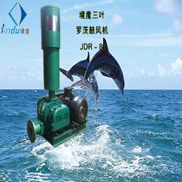 JDR-80罗茨曝气机三叶罗茨鼓风机在广东哪里有卖哪家质量好