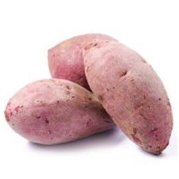 新鲜蔬菜紫薯批发价格