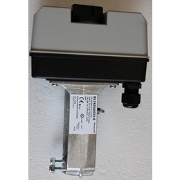 ML7420A8088-E电动阀门执行器
