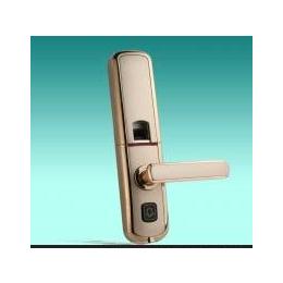 指纹、密码、钥匙带无线门铃功能的智能锁 别墅 办公 家用入户门