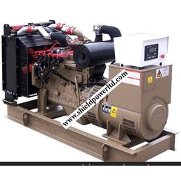 天然气发电机组,80KW燃气发电机组制造专家