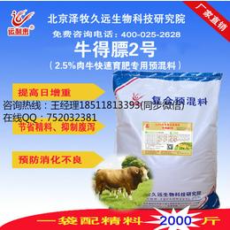 育肥牛饲料如何配置 育肥牛催肥添加剂