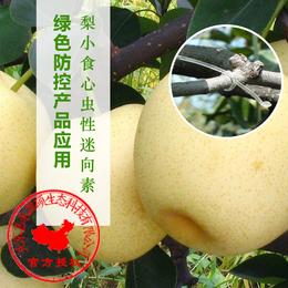 梨小食心虫性信息素丨生物防治食心虫丨梨树防治食心虫丨嘉禾源硕