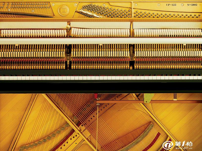 音板:云杉 击弦机:德国角杨木及毡呢 琴槌材料:德国vfg毡呢 琴弦材料图片