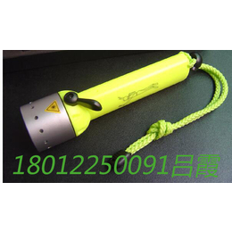 POP-lite F8充电式潜水手电筒LED灯泡
