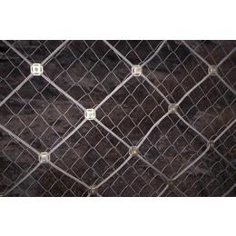 供应GPS1型主动防护网衡水奇佳边坡防护网价格