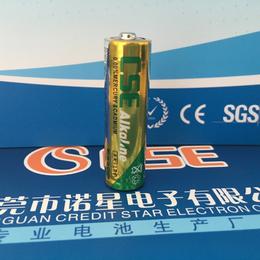 电池厂家 低价供应5号碱性电池 LR6碱性电池 AA碱性电池