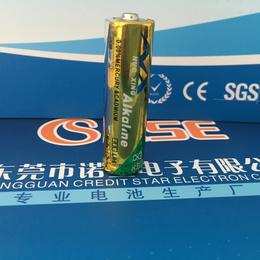 厂家直供AA电池 碱性5号电池 LR6 玩具遥控器 礼品电池