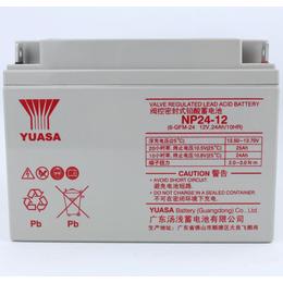新能源系统配套电池 汤浅蓄电池12V24ah常规现货报价
