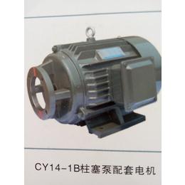 江苏双菊CY14-1B柱塞泵电机
