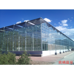 玻璃智能温室 V12-FH型Venlo式3屋脊温室大棚