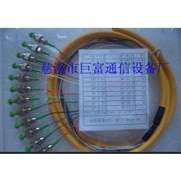 束状尾纤 12芯尾纤 光纤尾纤 12芯束状尾纤