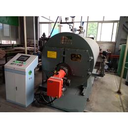 供应卧式冷凝燃油燃气蒸汽锅炉