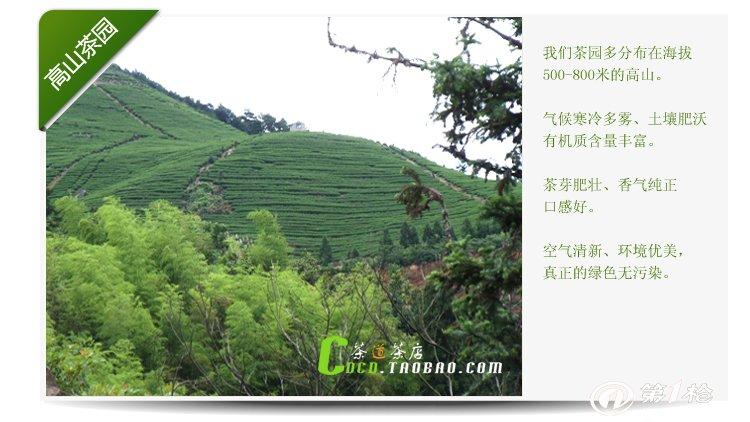 【产地直销】供应50g品尝装明前特级醇香越乡龙井茶叶图片