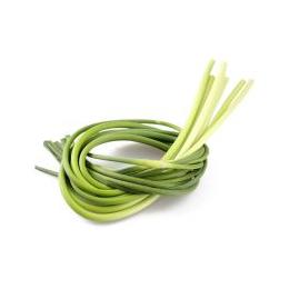 新鲜蔬菜蒜苗批发价格