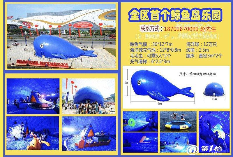 鲸鱼岛全套出租蓝鲸出租一手设备供应商